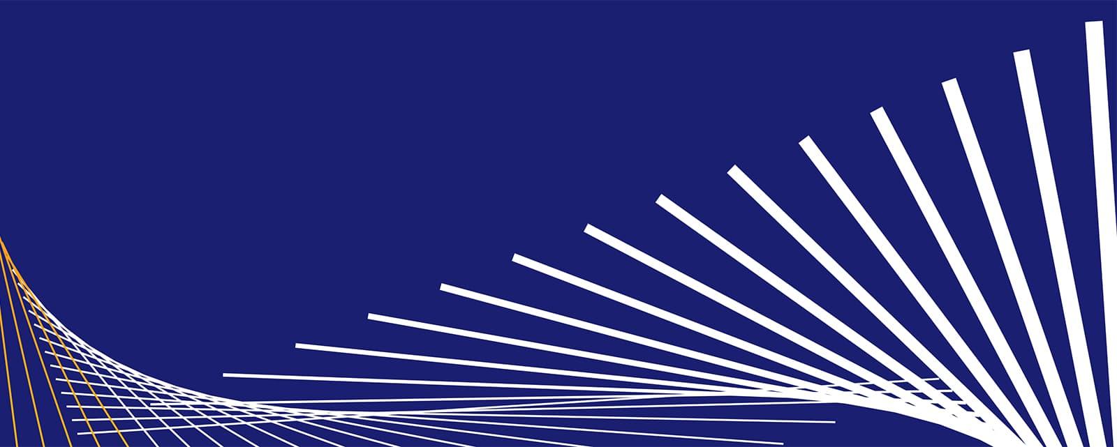 Visa Metlife - Dynamic Flag